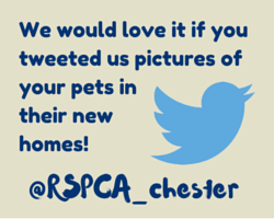 We would love it if youtweeted us pictures ofyour pets in their new homes