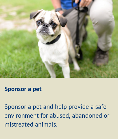 RSPCA Chesterfield & North Derbyshire Branch - Safe Haven Scheme