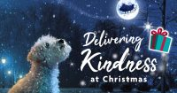 Delivering kindness at Christmas