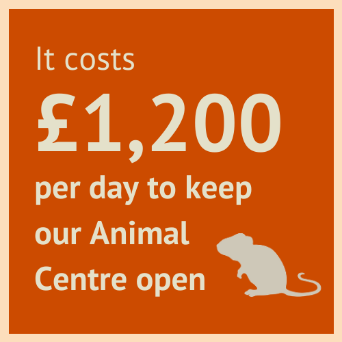 Information about the RSPCA Chesterfield & North Derbyshire Branch